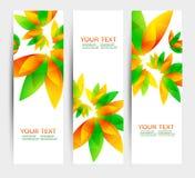 Satz von drei Naturvektorfahnen mit Florenelementen Stockbilder