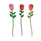 Satz von drei Rosen von verschiedenen Farben auf einem weißen Hintergrund VE Stockbild