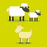 Satz von Karikatur-Schafen, Lampe und Ziege Lizenzfreies Stockbild