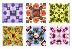 Satz von sechs Blumenquadraten gemacht von den natürlichen Blumen stockbilder