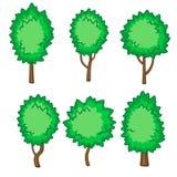 Satz von sechs jungen Bäumen Lizenzfreies Stockfoto