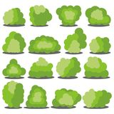 Satz von sechzehn verschiedenen Karikaturgrünbüschen lokalisiert auf weißem Hintergrund Stockfotos