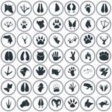 Satz von siebzig einfachen Tierikonen Lizenzfreie Stockbilder