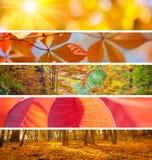 Satz von unterschiedlichem Autumn Banners - bunte Hintergründe, beautifu Stockfoto