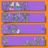 Satz von vier Fahnen des Vektors 3D mit von Hand gezeichneter Blumenverzierung stock abbildung