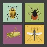 Satz von vier Farbflachen Insektenikonen Stockbilder