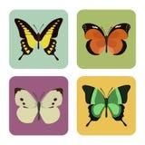 Satz von vier Farbflachen Schmetterlingsikonen Lizenzfreies Stockbild