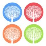 Satz von vier weißen Bäumen mit Blättern auf buntem rundem Hintergrund Lizenzfreie Stockfotos