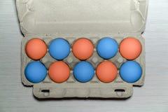 Satz von zehn bunten Eiern Goldenes Ei über grünem Steigungshintergrund Gemalte Eier Ein Pappbehälter mit rohen Hühnereien, Vorbe stockfoto