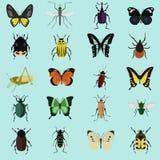 Satz von zwanzig Farbflachen Insektenikonen Stockbilder