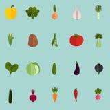 Satz von zwanzig flachen Ikonen des Gemüses Farb Stockfotos