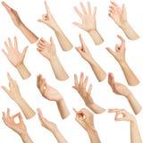Satz weiße weibliche Hände, die Symbole zeigen stockbilder