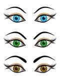 Satz weibliche Augen- blau, Braunen und Grünenfarben der Karikatur Stockbilder