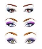 Satz weibliche Augen und Brauen, die Bild mit schön umarbeiten, bilden Art und Weiseabbildung Grüne Augen Blaue Augen Brown-Augen Stockfotografie