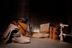 Satz weibliche Schuhe der Produkte verziert mit Herbst acsessuares Stockfotografie