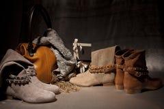 Satz weibliche Schuhe der Produkte verziert mit Herbst acsessuares Lizenzfreies Stockbild