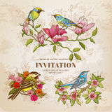Satz Weinlese-Blumen und Vögel Stockfotos