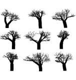 Satz Winterbäume Lizenzfreies Stockfoto