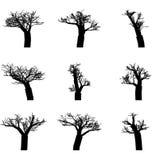 Satz Winterbäume Stockfotografie