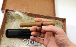 Satz Zigarren Lizenzfreies Stockbild