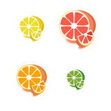 Satz Zitrusfruchtikonen Stockfoto