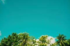 Sauberer Himmel des Hintergrundes Stockfotografie