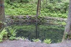 Sauberer, ruhiger Waldsee, das Ufer wird mit Flusssteinen im Th gezeichnet lizenzfreie stockfotografie