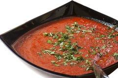 Sauce à Vindaloo Photo libre de droits