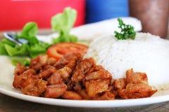 Sauce à wieh de poulet et riz thaïlandais images libres de droits