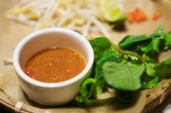 Sauce with bean sprouts. Stock Images