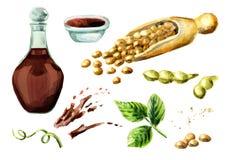 Sauce de soja et soja réglés Illustration tirée par la main d'aquarelle illustration libre de droits