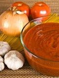 Sauce et ingrédients à spaghetti Photographie stock