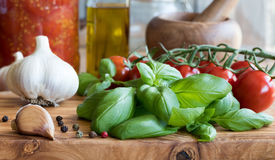 Sauce fraîche de basilic, de tomates-cerises, d'ail et tomate Images libres de droits