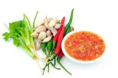 Sauce à fruits de mer Photos stock