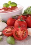 Sauce/gazpacho Royalty Free Stock Photo