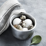 Sauce pan with raw hen and quail eggs. Metallic sauce pan with raw hen and quail eggs on dark shabby background Stock Image