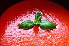 Sauce pour pâtes et basilic à tomate Image libre de droits