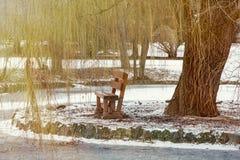 Sauce que llora y banco de madera por el lago congelado Fotos de archivo