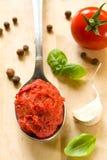 Sauce tomate et épices Images stock