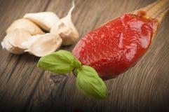 Sauce tomate et basilic Photographie stock libre de droits