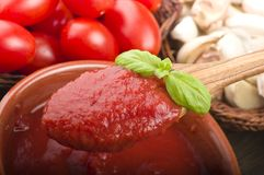 Sauce tomate et basilic Photographie stock