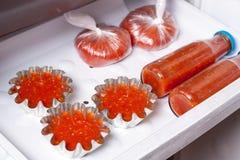 Sauce tomate et jus de tomates Photographie stock