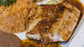 Sauced Mahi-mahi Teller Lizenzfreies Stockfoto