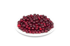 Saucer with berries cranberries Stock Image