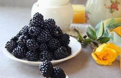 Saucer with blackberries Royalty Free Stock Photo