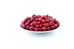 Saucer filled with ripe cranberries Royalty Free Stock Photos