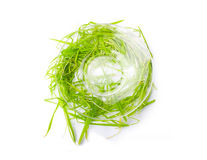Saucer and green grass isolated Royalty Free Stock Images