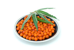 Saucer with sea-buckthorn berries and some leaves. Saucer filled with sea-buckthorn berries and some leaves isolated on the white background Stock Photos