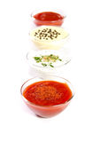 Sauces. Four types of sauces on white Royalty Free Stock Images