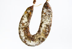 Saucisse plate Image stock